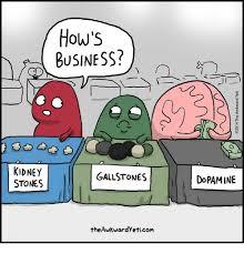 Kidney Stones Meme - how s business kidney stones gallstones dopamine