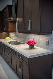 kitchen cabinets in florida niche in kitchens kitchen interior design in weston fl 33327