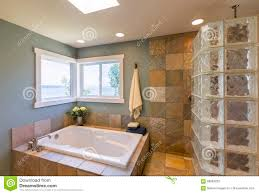 spa bathroom contemporary upscale home spa bathroom interior with acrylic