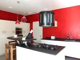 cuisine mur et gris deco cuisine organisation blanche mur et gris newsindo co