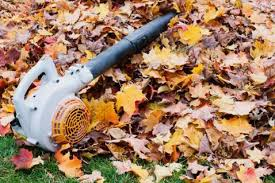 Fall Cleanup Landscaping by Fall Cleanup Manassas Va Landscaper In Manassas Va Prudencio