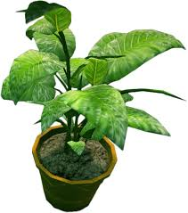 small potted plants image dead rising small potted plant 3 png dead rising wiki