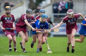 Seeking Commercial Camogie Seeking Commercial Support Sport For Business