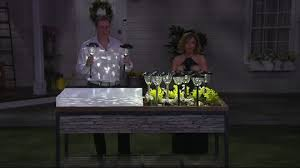 paradise 10 solar light set page 1 qvc