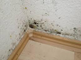 schimmel im schlafzimmer entfernen schimmel im schlafzimmer hinter dem bett gesundheit recht