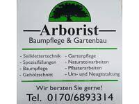 garten und landschaftsbau kassel garten landschaftsbau gartenpflege baumfällung baumpflege in
