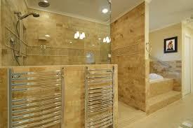 bathroom design marvelous handicap toilet seat in bathroom