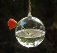 popular glass terrarium globes buy cheap glass terrarium globes