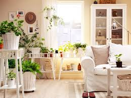 how to decorate a small house with indoor plants 06 u2013 ashe mag
