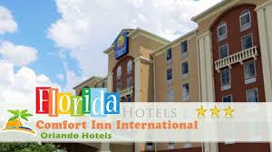 Comfort Inn Universal Studios Orlando Comfort Inn International Orlando Hotels Florida Youtube