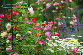 Photos Flowers Gardens by Create A Stunning Garden 20 Favorite Flowers To Plant Jennifer