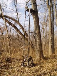 tree stands and after the season is gun and the