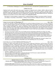 Sample Resume Data Analyst by Credit Analyst Resume Example Resume Pinterest Resume Examples