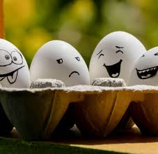 funny wallpaper for ipad funny eggs hd desktop wallpaper hd wallpapers