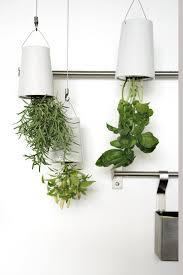 boskke sky planter turn your world upside down digsdigs
