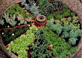 Herb Container Gardening Ideas Getting Fresh With Herbs Wagon Wheel Herb Garden Links To Site