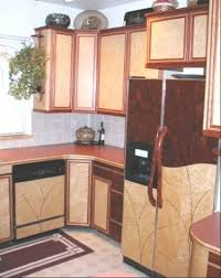 custom designed kitchen cabinets and appliance panels by shinn