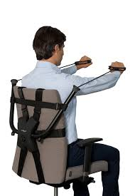 Chair Gym Com Amazon Com Officegym The Office Chair Trainer Exercise Bands