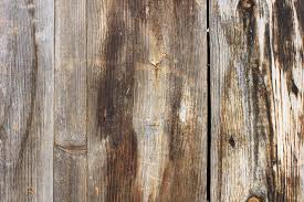 rustic wood rustic wood background free gse bookbinder co