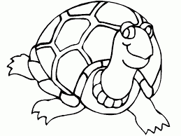 sea turtles coloring pages intended to invigorate in coloring