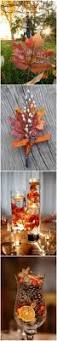 Fall Backyard Party Ideas by Best 25 Fall Engagement Parties Ideas Only On Pinterest