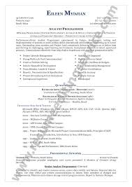 Best Resume Set Up by Functional Format Resume Resume For Your Job Application