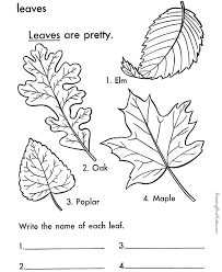 printable leaf coloring girls miscellaneous