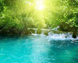 Deep Forest Green Waterfall In Deep Forest U2014 Stock Photo Iakov 4494631