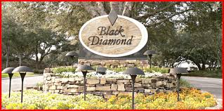 Black Diamond Landscaping by Black Diamond Era Suncoast Realty Inc