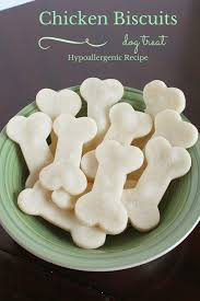 recipe for dog treats hypoallergenic dog treats recipe