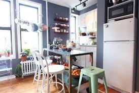Mini Kitchen Design Ideas Mini Kitchen Design Ideas Using Efficient Design Lestnic
