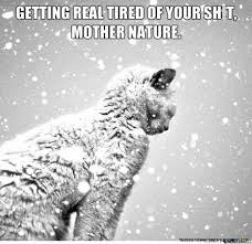 Grumpy Cat Snow Meme - nature quote pictures aol image search results