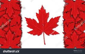 canada flag flag design red white stock illustration 697787020