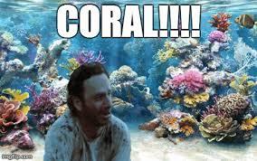 Walking Dead Meme Carl - finding carl the walking dead the walking dead meme twd memes