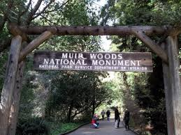 Muir Woods Map Muir Woods National Monument Hiking