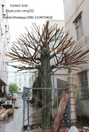 tree without leaves tree without leaves suppliers and