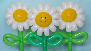 flowers and balloons cheerful flower of balloons subtitles