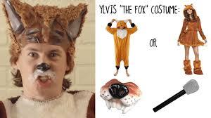 Fox Halloween Costumes