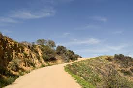 the 5 best running paths in los angeles