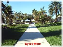 Miami Beach Botanical Garden by Miami Beach Botanical Gardens