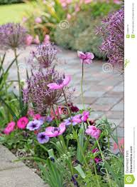 victorian country cottage garden flowers stock photo image 31860716