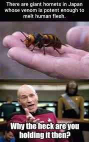 Patrick Stewart Memes - the best funny pictures of today s internet