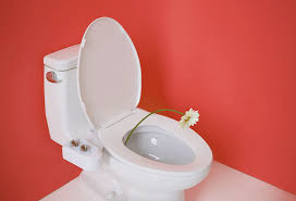 Why Dont Americans Use Bidets Your Just Might Thank You For Getting A Bidet From Tushy