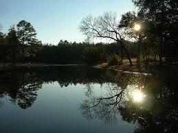 South Carolina Nature Activities images Top 8 things to do in aiken south carolina trip101 jpg