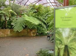 Botanical Garden Sydney by The Royal Botanic Garden Sydney Sydney