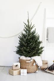 simple christmas tree display merrythought