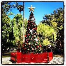 Christmas Decorations Shopping Centres Australia by Sydney Christmas Christmas Lights Christmas Decorations Martin