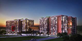 phuket real estate emerald development group best condo
