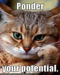 Ponder Meme - growth mindset memes collection carol dweck growth mindset memes