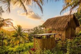 from a treehouse in the bahamas to a cottage in negril airbnb